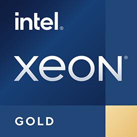 Intel Xeon Gold 6230T